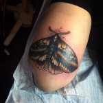 lunderskin-maisonclosetatouage-papillon5